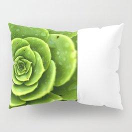 Wet Green Pillow Sham