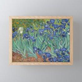 Irises Framed Mini Art Print
