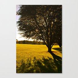 Stanley Park Westfield  Canvas Print
