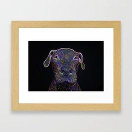 Cosmic pittbull Framed Art Print