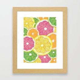 Citrus Fruits Framed Art Print