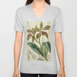 Cattleya bicolor Curtis 82 4909 (1856) Unisex V-Neck