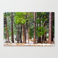 forrest Canvas Prints featuring Forrest by Savannah Ault