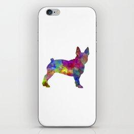 Boston Terrier 01 in watercolor iPhone Skin