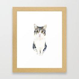 Little cat Harry Framed Art Print