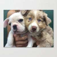 puppies Canvas Prints featuring Puppies by Camila Mariel