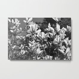 Black And White Flowers In The Sun Metal Print