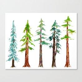 Tall Trees Please Canvas Print