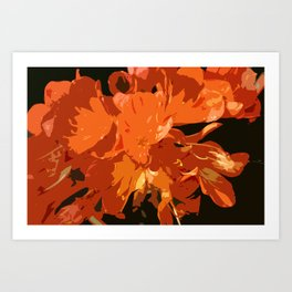 Orange Bush Lily Art Print
