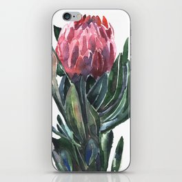 protea iPhone Skin
