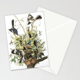 Mockingbird, Birds of America, Audubon Plate 21 Stationery Cards