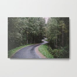 The Movement of the Trail Metal Print