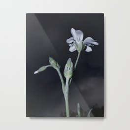 PURITY WHITE FLOWER Metal Print
