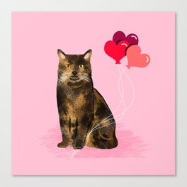 Cat valentines day love heart balloons cat breed must have tortoiseshell Canvas Print