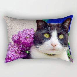 Orazio charming cat in the blue Rectangular Pillow