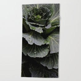 Earth and Water (1st in Cabbage Collection) Beach Towel