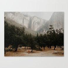 Yosemites fog Canvas Print