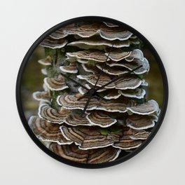 Turkey Tail Wall Clock
