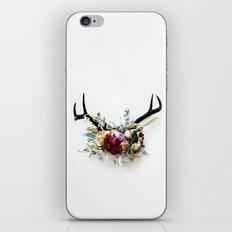 Floral Antlers VI iPhone & iPod Skin