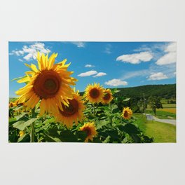 Sunflowers In Sunflower Field Rug