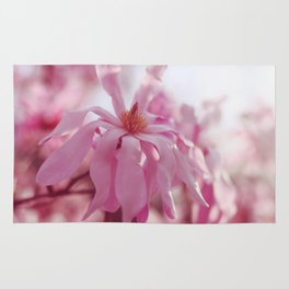 pink star magnolia Rug