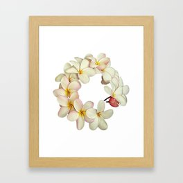 Plumeria Tropical Flower Garland Framed Art Print