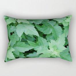Settled Rectangular Pillow