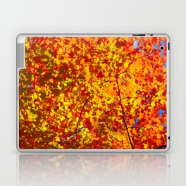Blazing Fall Canopy Laptop & iPad Skin