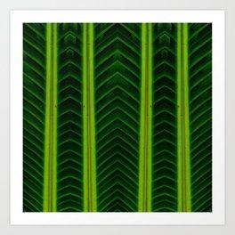 Palm line Art Print