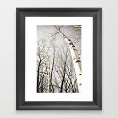 Bareness of Winter Framed Art Print
