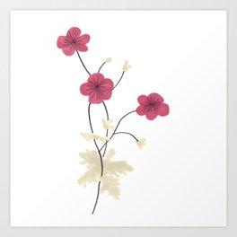 Armenian Cranesbill Flower Art Print