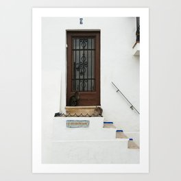 Two cats on White Stairs Art Print