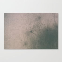 Macro Canvas Print