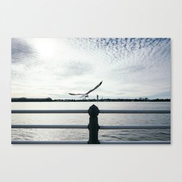A Moment of Freedom Canvas Print