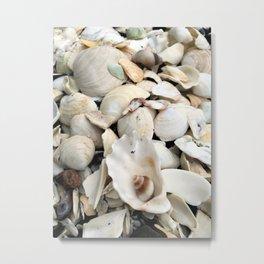 Spiral Shell Metal Print
