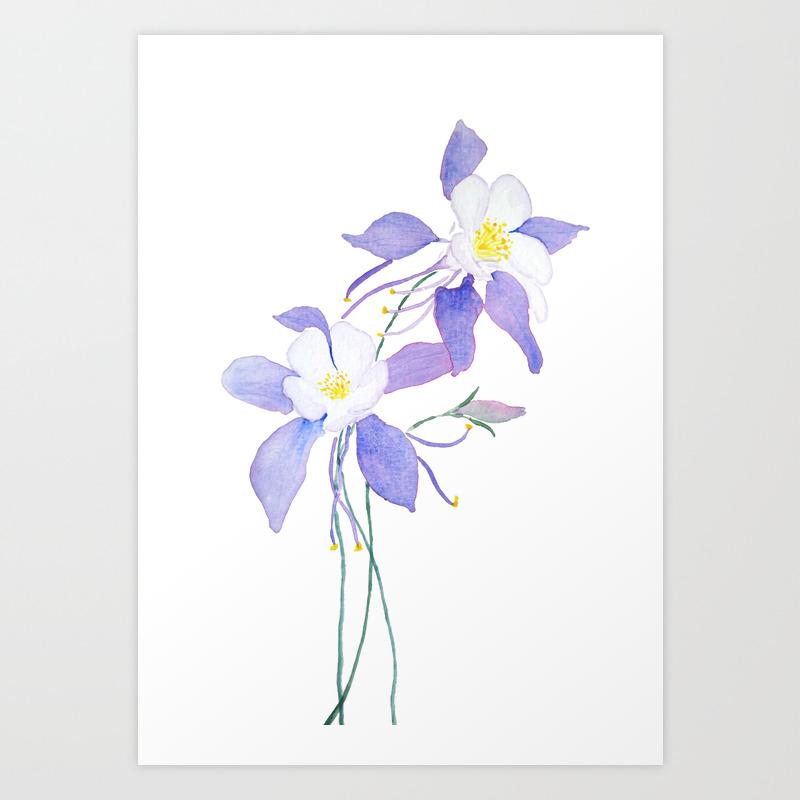 Purple Columbine Flower Art Print By Colorandcolor Society6
