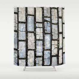 Blue Street Grid Shower Curtain