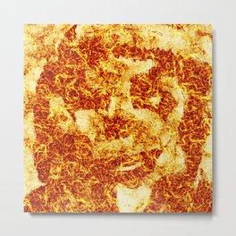FIRE LOGO Metal Print