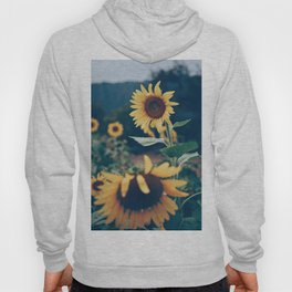 Collecting Sunflowers Hoody