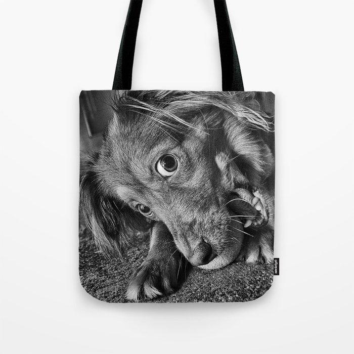 Dog playing with his ball Tote Bag