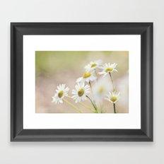 dreamy daisies Framed Art Print