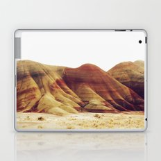 Oregon Painted Hills Laptop & iPad Skin