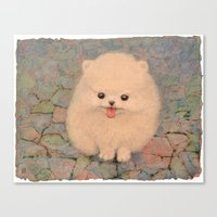 pomeranian Canvas Prints featuring Pomeranian by irshi