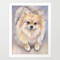 Pomeranian Watercolor Pom Puppy Dog Painting Art Print