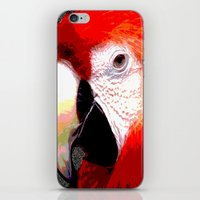 parrot iPhone & iPod Skins featuring Parrot by Crayle Vanest