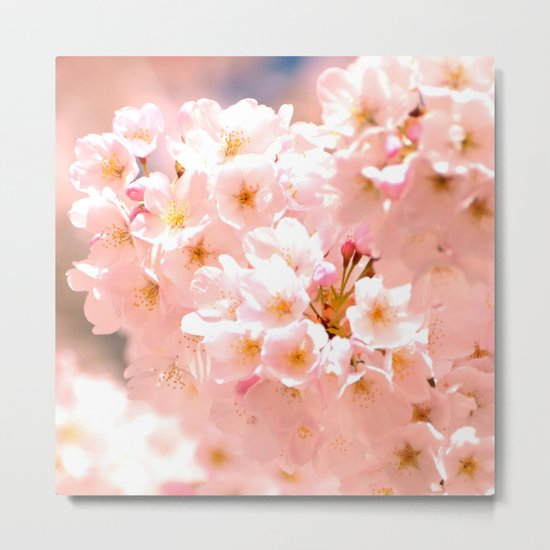 Pretty Pink Spring Blossoms :) Metal Print
