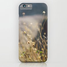 In the Desert Slim Case iPhone 6s