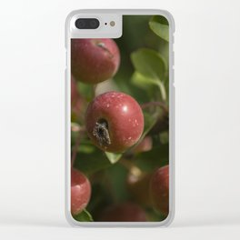 Red drupes Clear iPhone Case