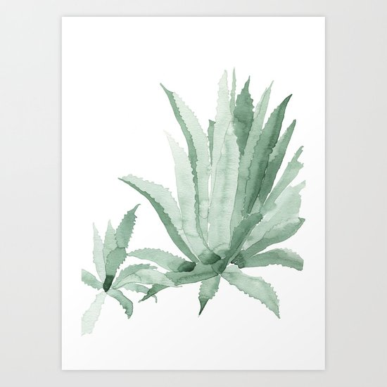 Agave by theaestate