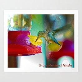 Hummingbird Photoart Art Print